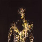 O (Kreis)  - When Plants Turn Into Stones - CD-Cover