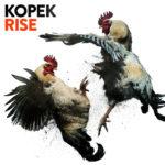 Cover - Kopek – Rise