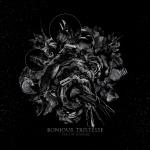 Cover - Bonjour Tristesse – Par Un Sourire (Re-Release)