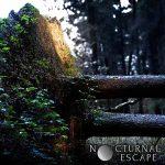 Cover - Nocturnal Escape – Nocturnal Escape