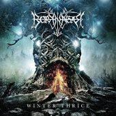 Borknagar - Winter Thrice - CD-Cover