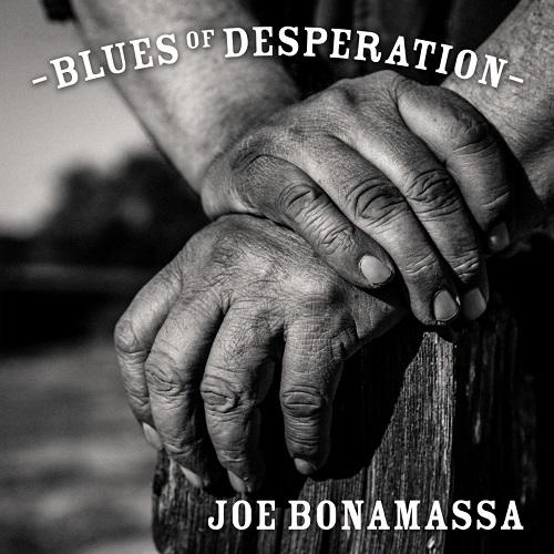 Joe Bonamassa - Blues Of Desperation - Cover