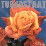 turbostaat-schwan